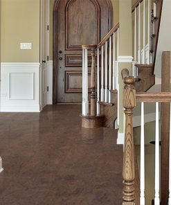brown salami cork flooring entryway foyer showing front door
