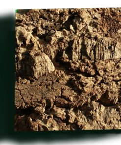 cork wall panels sustainable sample