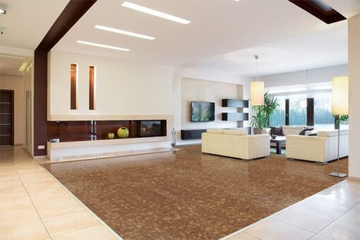 rocky bush cork beveled planks interior of modern area in spacious house forna