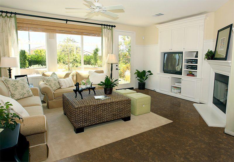 walnut burlwood cork floor living room interior in gray and brown colors features gray sofa atop dark floor